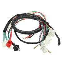 Original Car Alarm Headlight Wire Harness For Motorcycles With Relay Fuse Manufactures