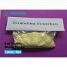 Trenbolone Enanthate Powder Tren E / Parabolan Manufactures