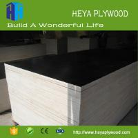 Wholesale 4x8 film faced plywood factory price to mid east market Manufactures