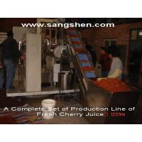 A Complete Set of Production Line of Fresh Cherry Juice Manufactures