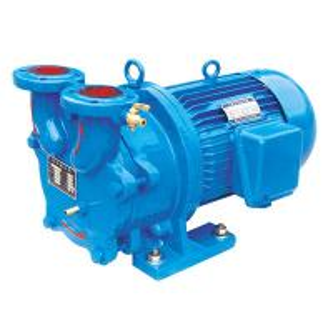 2BV2 Water Ring Vacuum Pump/Compressor Manufactures