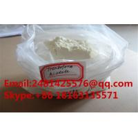Top Quanlity Muscle Growth Trenbolone Steroids Trenbolone Acetate Powder CAS 10161-34-9 Manufactures