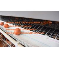 Poultry Farming A Type Battery Layer Chicken Cage Equipment with 120 Birds Hot Galvanized Steel Material Manufactures