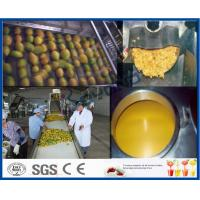 Mango Pulp Processing Machinery Mango Processing Line With Aseptic Package Machine Manufactures