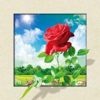 Waterproof Flower Images 5d 3D Lenticular Pictures 40x40cm For Restaurant Manufactures