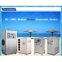 Automatic air dryer Ceramic Ozone Generator Water Purification For Fruits Manufactures
