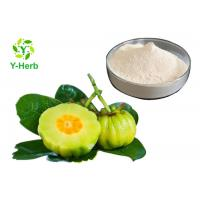 HCA Weight Loss Supplement Powder 50% 60% Hydroxycitric Acid Garcinia Cambogia Extract Manufactures