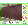 phenolic bp film faced plywood Manufactures