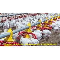 Chicken Shed Broiler Deep Litter System & Broiler Plastic Slat Floor Breeding System with Feed Pan Line & Drinker Line Manufactures