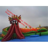 inflatable water slide with pool Manufactures