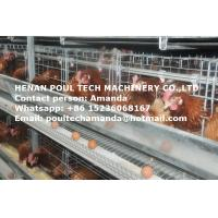 Chicken Farming Raising Equipment - Hot Galvanized Cage H Frame Automatic Chicken Coop & Layer Cage for Chicken House Manufactures