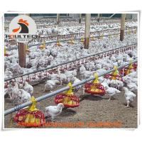 Chicken House Broiler Chicken Deep Litter System & Flooring Breeding System with Nipple Drinking Line for Chicken Feed Manufactures