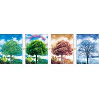 Quality Sheng Qi Season 3d 300*400mm flips pet lenticular picture posters with factory price for selling for sale