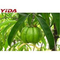 Quality Hydroxycitric Acid Weight Loss Steroids 50% Garcinia Cambogia Extract Powder for sale