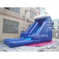 Blue Outdoor inflatable water slide with pool , Giant Inflatable Water Toys Manufactures