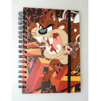 OK3D factory wholesale A4/A5/A6 lenticular flip cover 3d notebook with spiral wire lenticular cover notebook Manufactures