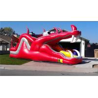 Dragon Water slide Manufactures