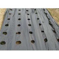 Outdoor Agriculture Black Garden Weed Mat , Weed Stop Garden Fabric For Raised Bed Manufactures