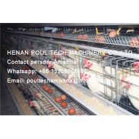 Quality Poultry & Livestock Farming Silver Hot Galvanized Steel Cage A Type Battery Hen for sale