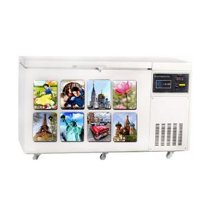 lenticular 3d fridge magnet for promotional gifts Manufactures