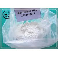 Benzocaine Raw Powders for Local Anesthetic CAS 94-09-7 Manufactures