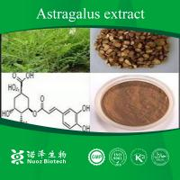 Manufacturer supply anti-aging Astragalus Root P.E Manufactures