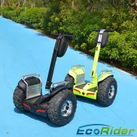 19 Inch 2 Wheel Electric Scooter 2000w Outdoor Short - Distance Travel Manufactures