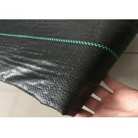 100% Virgin PP Black Weed Control Fabric For Greenhouse Binding Resistant / Press Resistant Manufactures