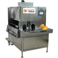 Compact Structure Mango Processing Line Paste Processing Line 5 Tons Per Day Manufactures