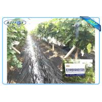 Anti UV PP Non Woven Landscape Fabric for Agricultural Area as Ground Coverings or Plant Bags Manufactures