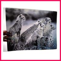 Quality 3D lenticular printing poster for sale