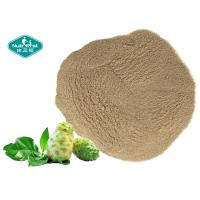 100% Natural Freeze Dried Noni Fruit Powder Noni Fruit Powder for Healthy Body Weight Manufactures