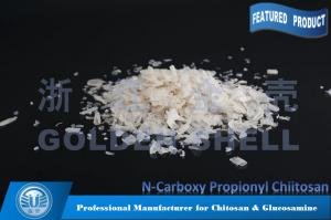 Flocculant CPCTS N-Carboxy Propionyl Chitosan For Sewage Treatment Manufactures