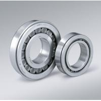 Quality Electric Scooter Cylindrical Roller Bearing for sale