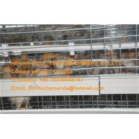 Quality Chicken House Hot Galvanized Cage A Frame Automatic Small Chicken Cage for for sale