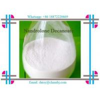 Nandrolone Decanoate Steroid Liquid For Effective Bodybuilding CAS 360-70-3 Manufactures