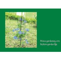 Plant Support Hoops / Garden Spiral Plant Support Black Color For Flower Support Manufactures