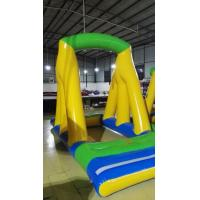 PVC Giant Inflatable Water Slide With Swimming Pool for kids to play around Manufactures
