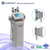 China Cryolipolysis fat freeze slimming machine/cryolipolysis slimming machine/cryolipolysis on sale