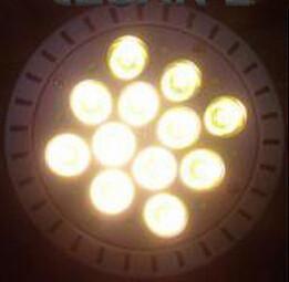 Pure white color PAR38 12W led spotlight Manufactures
