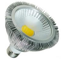 12W COB E27 led par30 light CE&RoHS approved Manufactures