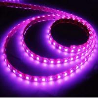 CE 120leds /M IP65 3528 SMD Led Strip Light 840lm 9.6w /M For Stairway Accent Manufactures