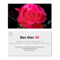 0.6mm Thickness 89x68mm 3D Lenticular Card 3D Flip Changing Effect Manufactures