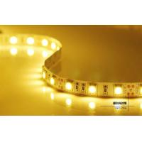 Quality DC12/24V 5m IP65 LED Strips Light , Energy saving Led flexible strip lights for sale