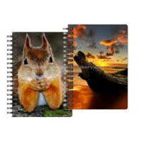China 0.6mm Thickness Plastic Cover Spiral 3D Lenticular Notebook 80 Pages A4/A5/A6 Size on sale