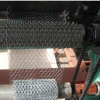 Electro Galvanized Chicken Wire Netting for Wall Plastering and Building Manufactures