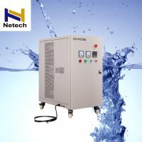 Quality 30G/H Ozone Generator Water Purification Drinking Water Treatment / Air Purification for sale