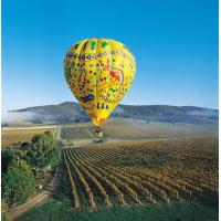 Colorful Outdoor Inflatable Hot Air Balloon For Tourism , Hot Air Balloon Flights Manufactures
