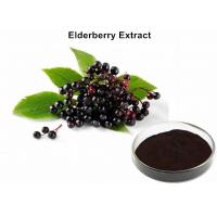 Elderberry Fruit Anthocyanin Extract Powder 25% Anthocyanins UV Diuretic And Stop Bleeding Manufactures