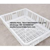 Quality Poul Tech White Orange Color PE Material Broiler Chicken Carriage Cage & Plastic Transport Cage for Poultry Farm for sale